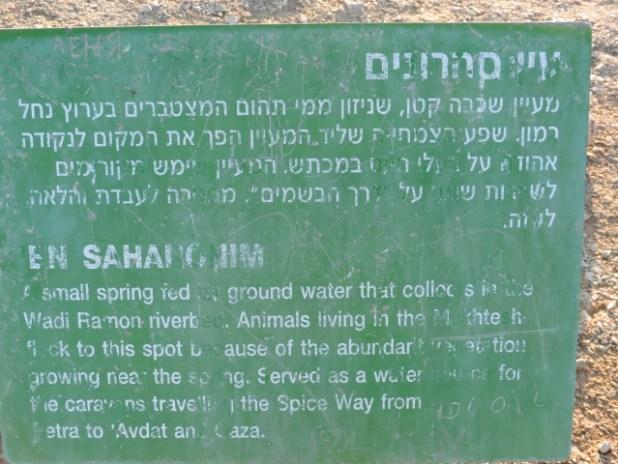 Ein Saharonim