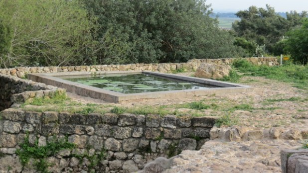 Ein Tzur- pool
