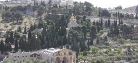 http://rol-benzaken.centerblog.net/6860-le-mont-des-oliviers-a-jerusalem