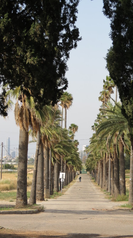 Jerusalem Gate Mikveh Yisrael