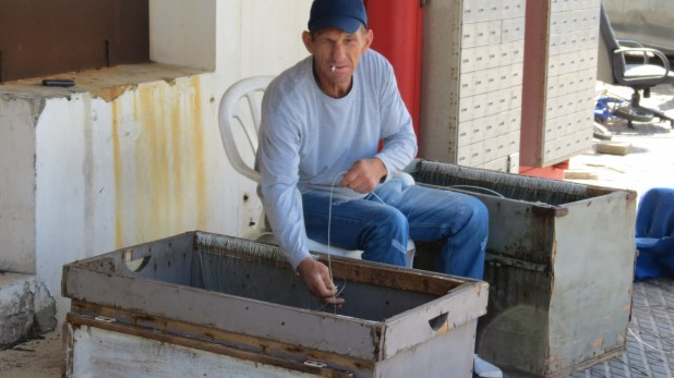 Jaffa fisherman