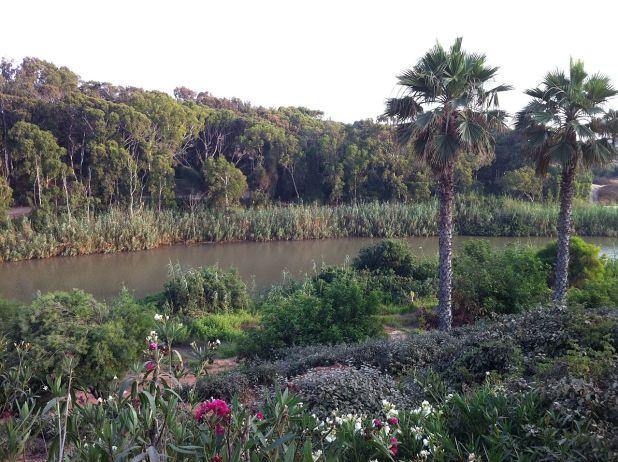 Park Nahal Hadera Photo: Olesya13