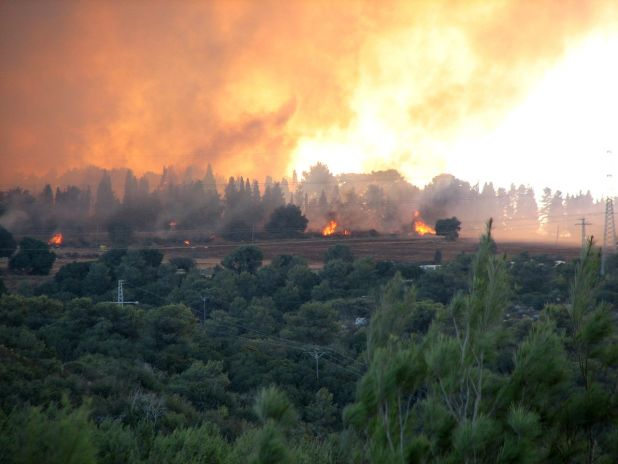 Carmel_forest_-_fire_near_Isfiya from direction of Haifa University רונית בן צבי בת משפחה - Carmel Fire Memorial
