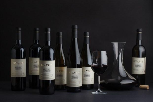 יינות היקב 2 צילום חיים יוסף