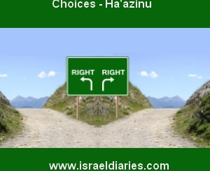 Choices - Haazinu