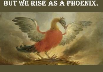 They say Burn, Jew! But Jews Rise as a Phoenix.