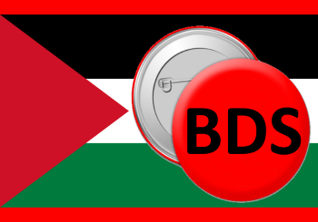 Palestinian Flag - 9 reasons I am pro-BDS