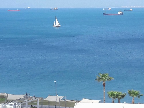 view from Rambam hospital room after total knee replacement