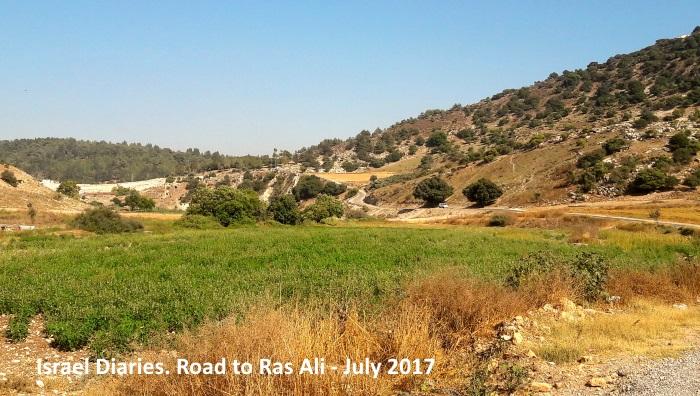Road to Ras Ali
