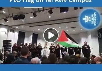 Fidai and PLO flag on Tel Aviv campus