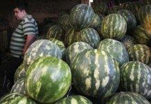 palestinian watermelon