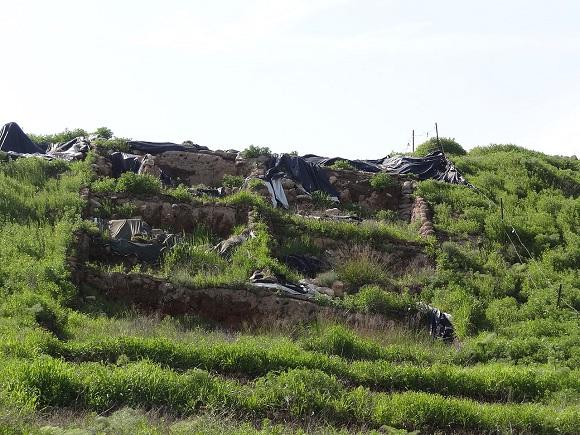Фото Wikipedia: археологический объект Тель-Зайт