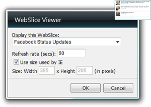 WebSlice Viewer Gadget Options