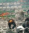 Stadionul lui Groninge in flacari