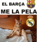n_real_madrid_humor-1568260