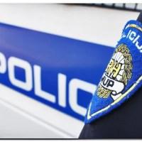 POREČ: Po vrućini ostavili dvoje djece i psa u zaključanom automobilu - policija uhitila roditelje
