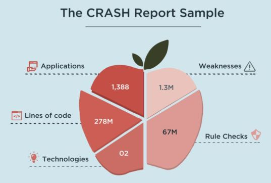 CRASH-Report - Erhebungsdaten