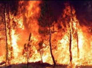 incendio2