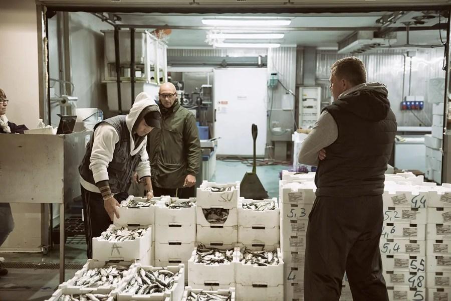 All'interno del mercato all'ingrosso di Milano spazio anche al prodotto ittico, molto richiesto dai ristoratori Sogemi, euforia da riapertura «L'Horeca spinge in alto gli ordini»