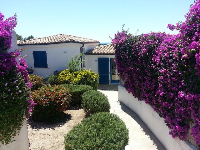 Calamenhir - Sardegna