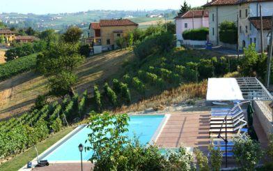Het zwembad tussen de wijngaarden
