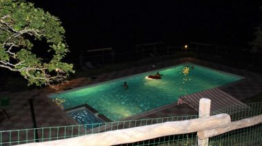 Zwemmen in het donker