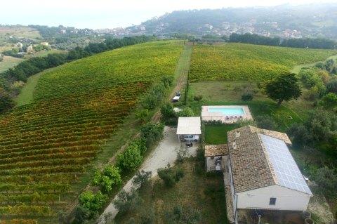 Ligging tussen de wijngaarden