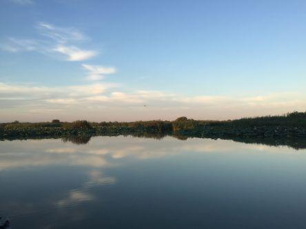italiainpiega-pieghe-meravigliose-itinerari-moto-pianura-padana-lungo il fiume mincio-porto le grazie 1