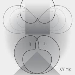 illustration-ms-xy