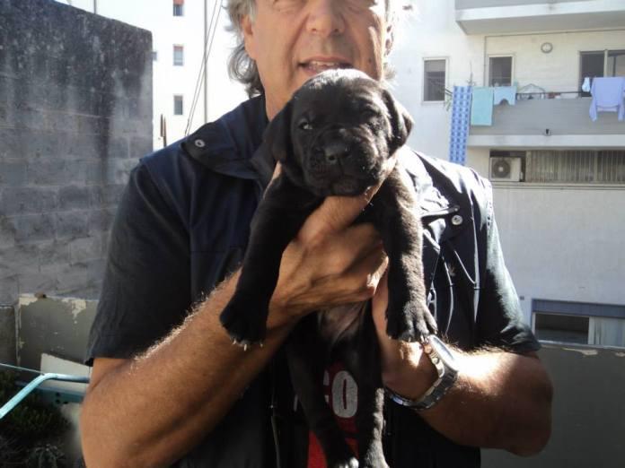 56az0-cucciola-nera.jpg