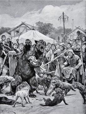 cane corso e orso