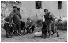 Pastori siciliani