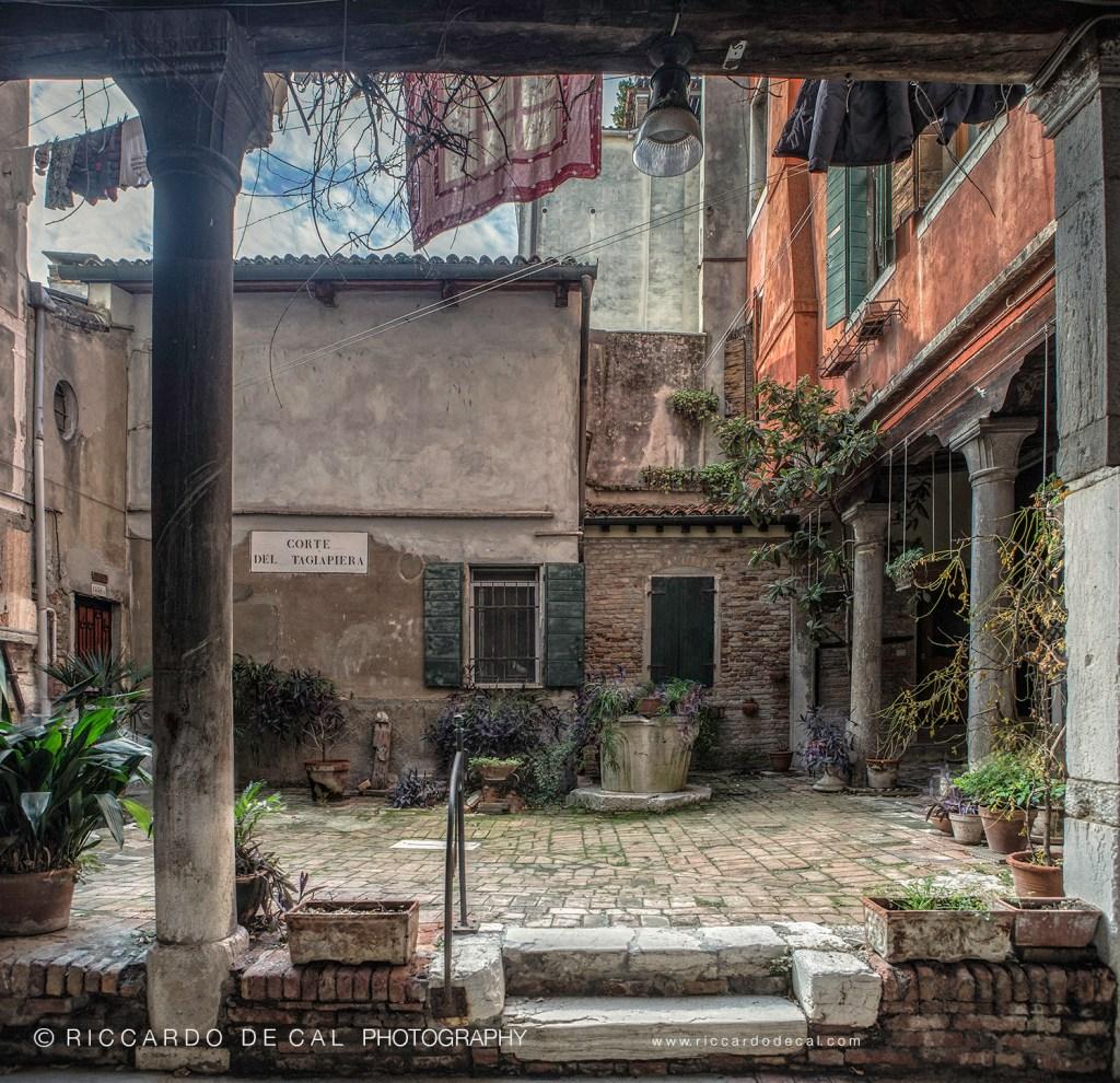 contributors Dream of Venice Architecture