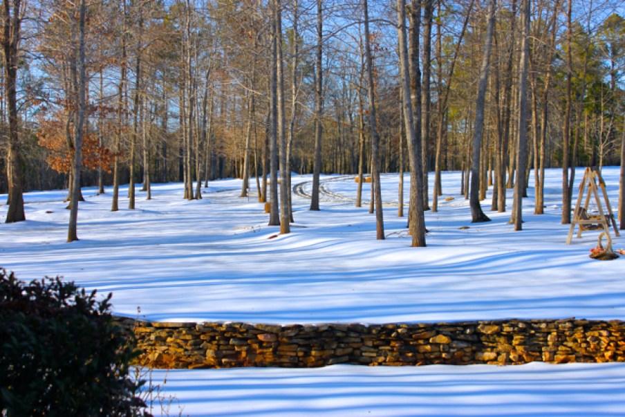 Winter Snow, Carolina's 2014