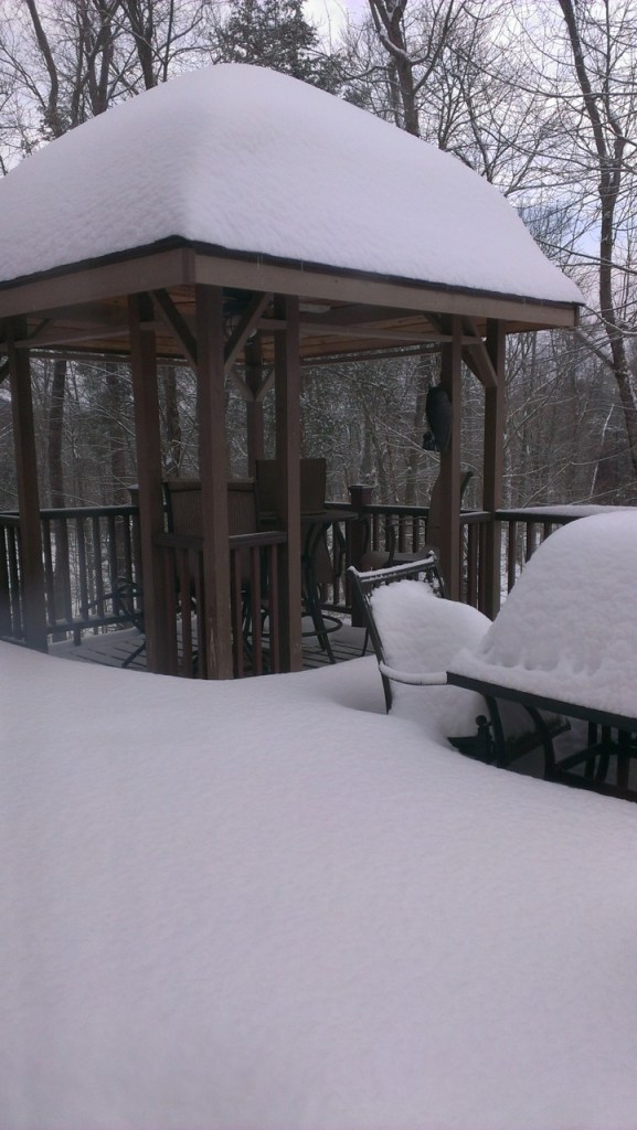 even more on the roof of Annamaria's gazebo . . . amazing!