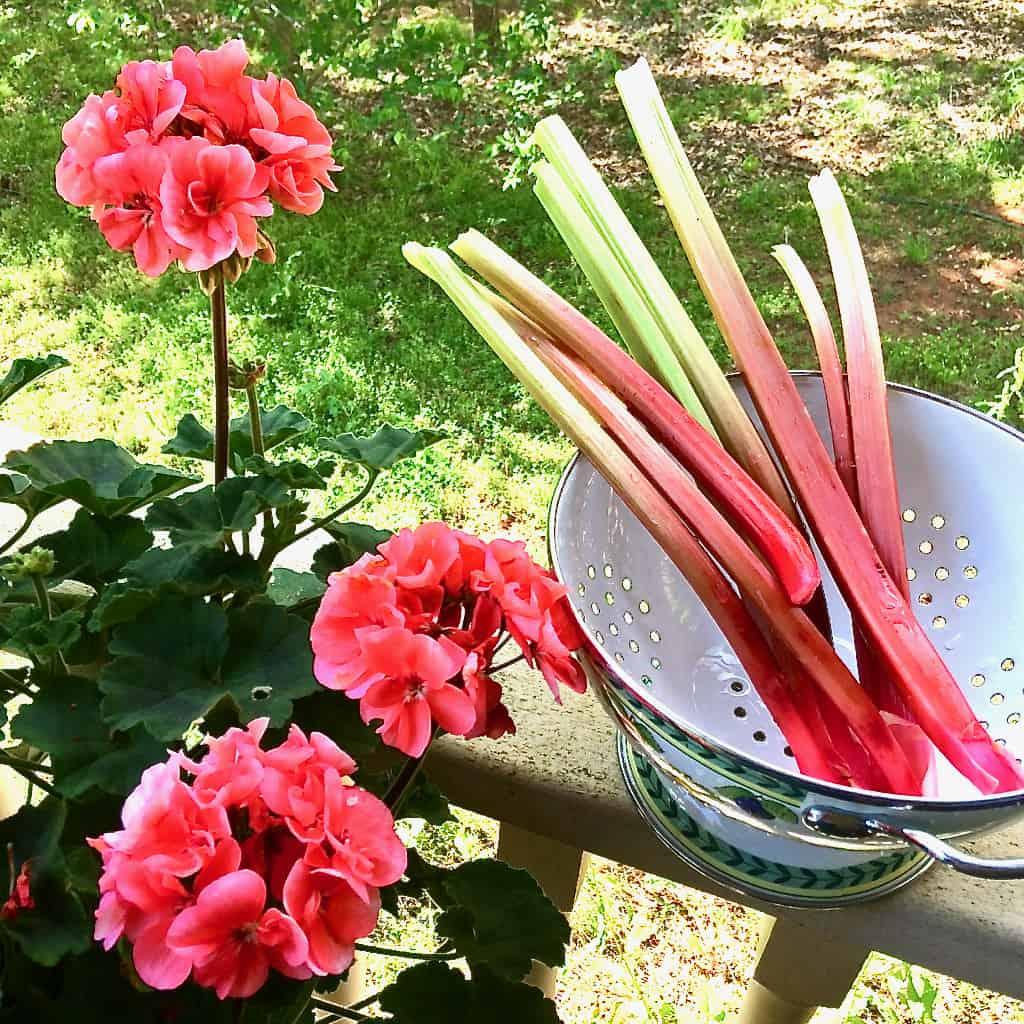 how to make strawberry rhubarb sauce