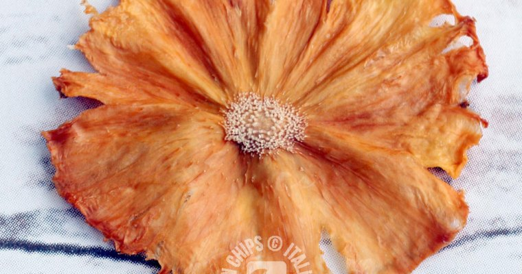 Lovely Dried Pineapple Flowers