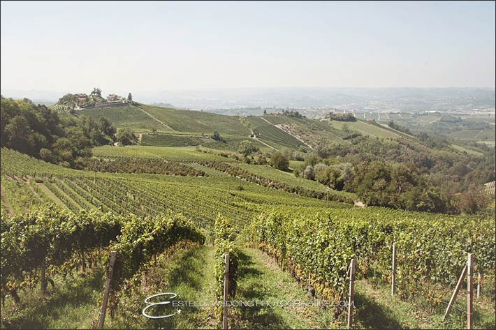 02_wedding-Langhe-vines-hills