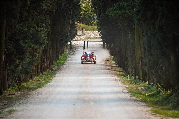 valpolicella-countryside-wedding_22