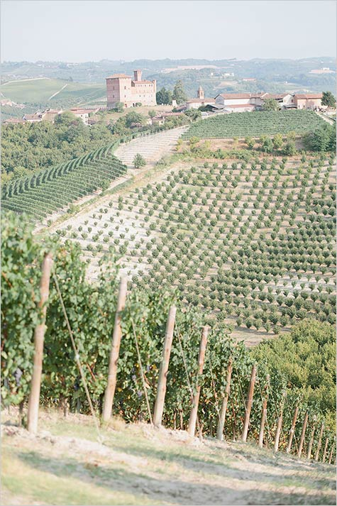 Vineyard wedding Langhe countryside Italy
