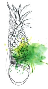 schizzo di ananas Francesca Nori verde acido