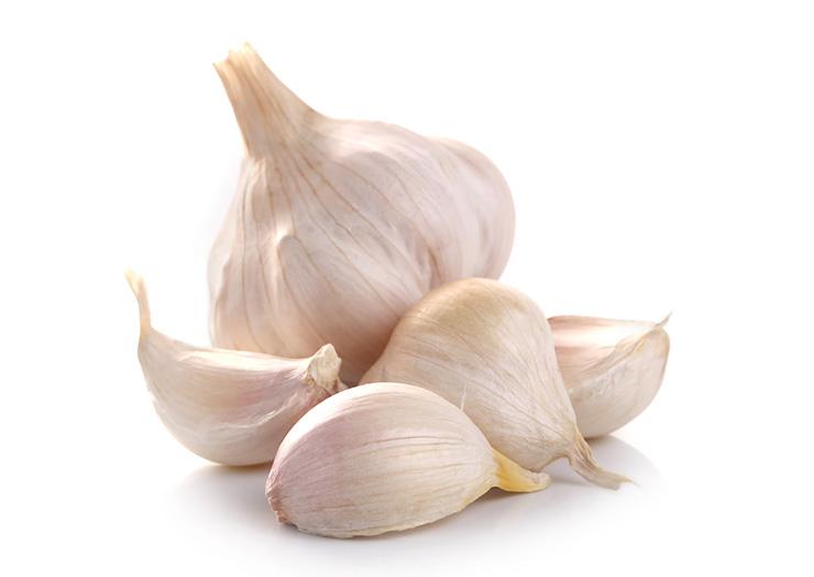 نتيجة بحث الصور عن garlic