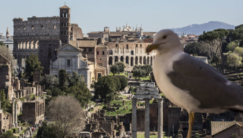 Cittadini romani bocciano i servizi: voto 4 ai bus, 3 alla pulizia della città