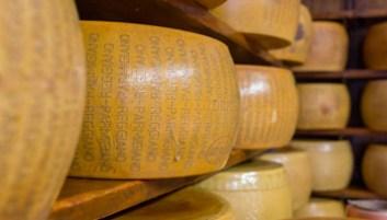 Parmigiano Reggiano - test-falsi-parmigiano-reggiano - www-quifinanza-it - 350X200
