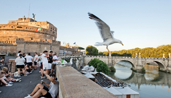 WHEN IN ROME, SEA GULLS DO AS THEY PLEASE