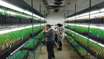 Pesticidi, Parlamento Europeo chiede procedure trasparenti e responsabili