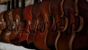 Carlo Tartarelli - Violini in Linea - Il Liutaio - Foto Realizzate Nnella Liuteria Mathias Menanteau - Carlo Tartarelli - 350X200