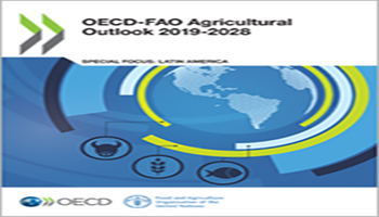 "RAPPORTO OECD-FAO AGRICULTURAL OUTLOOK 2019-2028"" <BR> ""Prospettive agricole OCSE‑FAO 2019‑2028″ <BR> <em> Commento di Pietro Bergamaschini </em>"