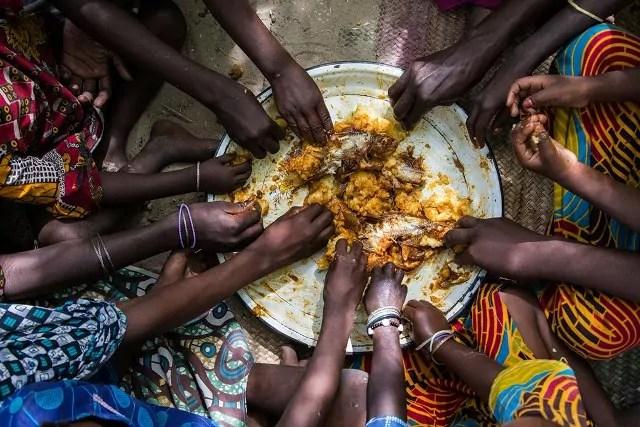 L'Unione europea finanzia con 5 milioni di euro il Programma Onu per introdurre agricoltura di qualità e debellare la malnutrizione in Ciad entro il 2030.