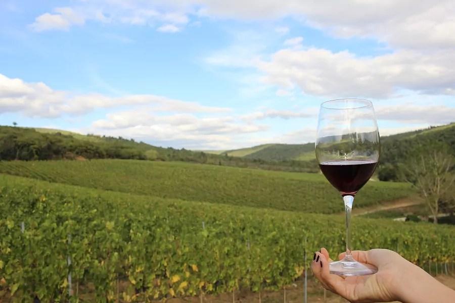 world travel market toscana vino campagna arezzo visit buy tuscany